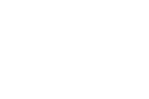 WE OFFER SPECIAL THECHNOLOGY
